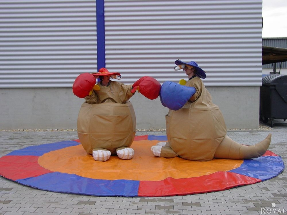 Boxspiele