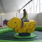 Enten Rodeo Indoor
