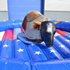 American Bullriding Professionelle Rodeoanlage